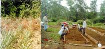 Desarrollo integral comunitario en el norte de la provincia de Esmeraldas