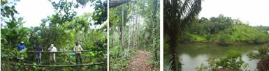 Finca modelo para desarrollar actividades ecoturísticas en El Tigre, San Lorenzo