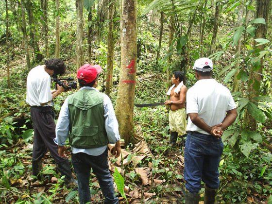 Manejo sustentable del bosque secundario en el norte de Esmeraldas