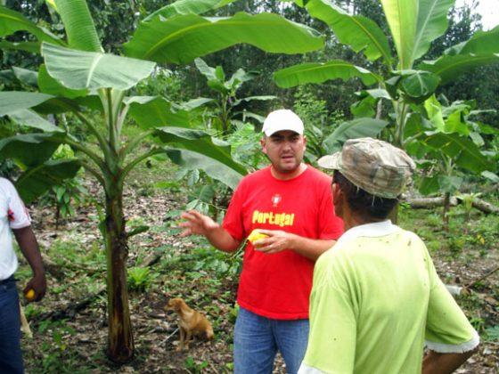 Manejo integral de fincas, con énfasis en cacao para cinco comunidades del norte de Esmeraldas