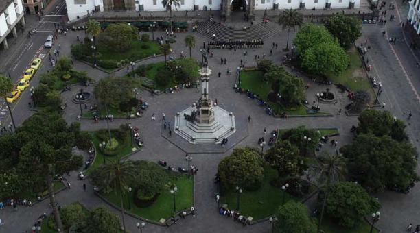 La ciudad de Quito cuenta con 448 árboles patrimoniales